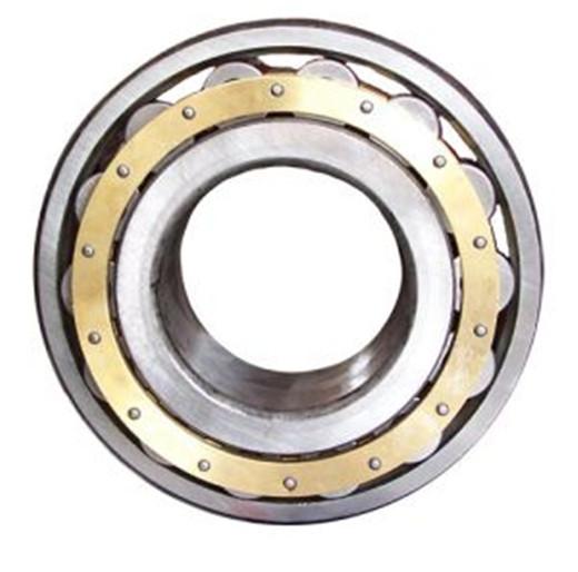 SKF不锈钢轴承